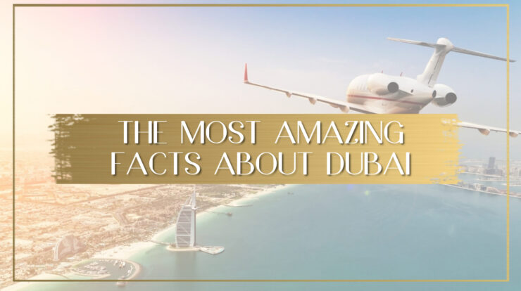 5 Facts About PRO Services In Dubai That Will Blow Your Mind